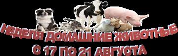 Неделя домашние животные