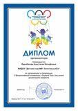 req_85769_diplom_org_barabanova_anastasiya_iosifovna-001