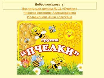 11 группа Пчёлки