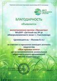 Звездочка ДОО № 51-001