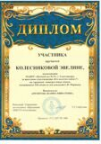 КолесниковаЭ-001